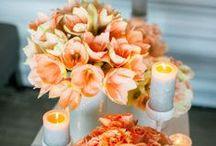 Orange Wedding Theme