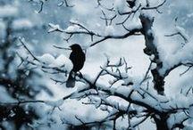 || snow ||