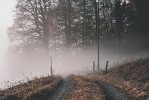 Inspi • AUTOMNE