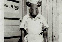 random || vintage oddities