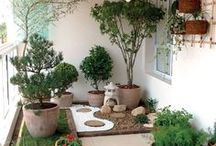 Dream Gardens / Inspiration for backyards, balcony's, and out door area's