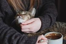 WarM & cOzy / warm, knus en gezellig