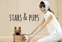 stars & pups / celebrity pooches & their humans #celebs #celebrities #dogs #pups #famous #famousdogs #hollywood #royalty