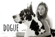dogue / dogs in vogue magazine #vogue #fashion #couture #dogs #dogue