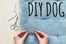 diy dog / diy projects for you & your pup! #diy #diydog #dogs #diypet