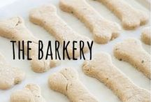 the barkery / yummy & healthy treats you can make at home