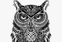 Owls... owls everywhere!