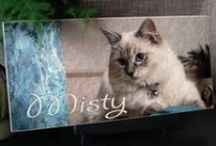 Pet Keepsakes / Custom pet keepsake tiles / by Treasured Friends - Pet Memorials / Pet Keepsakes