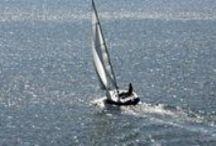 Solo Circumnavigators / For the love of the sea.