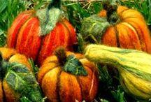 Filzen Herbst und Halloween / by Stephanie Mucha