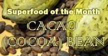 Superfood: Cacao (cocoa) Bean