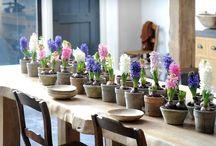 Home-grown flowers