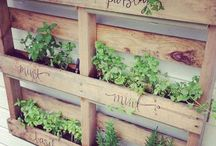 In the Garden / Ideas for organizing garden tools, raised beds, and just plain fun to look at gardens.