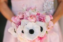 Wedding Bells / by Zee