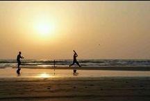 Beach Cricket / Beach life