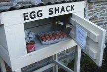 Roadside Produce Stalls
