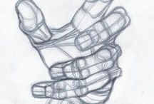 Anatomia umana - Mani