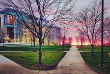 College / by Ashley Hilla