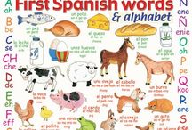 Spanish / Spanish grammer and vocabulary for beginners