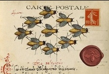 [philatelist]