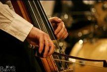 BedwyrPhoto.com - Porfolio / Fotografía de Conciertos