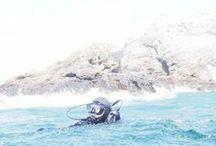 Diver Health & Safety / #scuba #diving #Diver #HealthandSafety