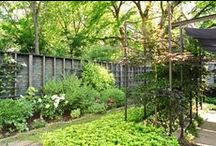 Backyards & Gardens