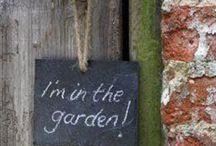 indoors garden/ nature