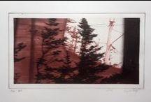 Virginia Mitford : Artwork / Printmaking for artist, Virginia Mitford.