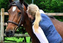 Equitation / Cheval sellerie matériel d équitation écurie box