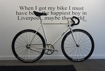 Beautiful Bicycles / by Rema