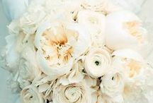 Wedding Flowers / So many lovely flowers! What does your bouquet say about your love? / by Lanier Islands Weddings