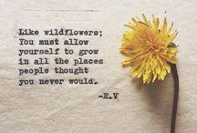 Quotes  / So true...