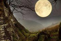 Moon / by Vera Heaton