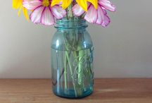 flowers / by laura bagheri