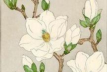 Inspiration - Traditional Asian Art / susan knaap, susan, knaap, knapp, art, artist, pictures, asian, influence, traditional, inspire, inspiration