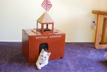 Fancy Stuff For Your Pets