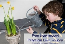 (EN) MONTESSORI ACTIVITIES AND LEARNING MATERIALS/ MONTESSORI AKTIVITY A POMŮCKY
