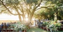 Wedding Ceremony / Charleston weddings ceremonies and Charlottesville, VA wedding ceremonies