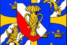 Heraldry / Coat of Arms from near and far relatives in my family tree.