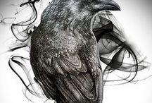 Drawing inspiration - Tegneinspirasjon