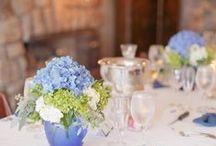 Blue Wedding Ideas / Blue Wedding Ideas for Blue Wedding Themes