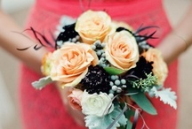 Coral Peach Wedding Ideas / Coral & Peach Wedding Ideas for Coral Wedding Themes