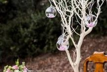 Wedding Manzanita Branch Centerpieces / Manzanita Branches are the easiest way to create a creative wishing tree or a wedding centerpiece. Use these for baby showers, birthday parties or wedding receptions for a unique way to hang crystal garland and candle votives.