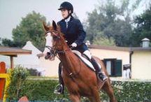 """Equitazione che passione! / Cavalcare trasforma """"vorrei"""" in """"posso"""".  Un cavallo, forte, potente, bello, è la proiezione dei sogni che la gente fa di se stessa, e ci permette di fuggire dalla nostra esistenza quotidiana. (Peter Brown)"""