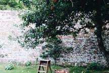 | Garden | / Cottage garden inspiration