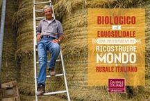 Le cartoline di #SolidaleItaliano / Sostieni e condivi #SolidaleItaliano Altromercato, l#equosolidale fatto in Italia, con le cartoline dei produttori