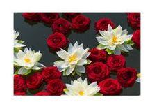 FLORALIADECOR: Indian wedding / #Floraliadecor #LocationVillaICollazzi #AgencyBentleys #FhotographyStudioThèQue