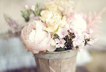 Florals / by Yeva Ducas