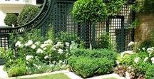Dream Gardens & Garden Dreams